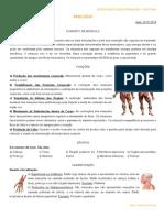 Sistema Muscular (Miologia) - Generalidades, Aula24.10.2014