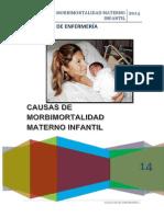 Causas de Morbimortalidad Materno Infantil EXPOSICION