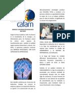 ARTICULO_CATEDRA_CAFAM_v4.pdf