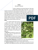 Black pepper.pdf