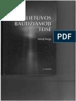 V. Piesliakas - Lietuvos Baudziamoji Teise 2 Knyga Justitia (2008)