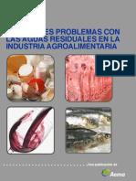 Principales Problemas Con Ebookaema 2