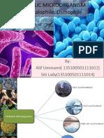 Extremophilic Microorganism