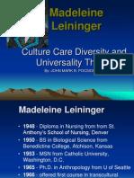 LeiningerTheory 2
