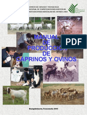 Jeringa desechable estéril Veterinaria mano Cría Perro Mascota Animal de ganado ovino