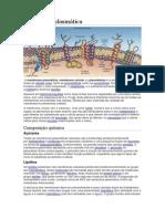 Trabalho Biologia Membrana Plasmatica