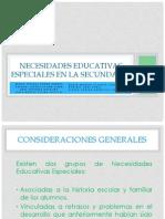 Necesidades Educativas Especiales en La Secundaria Completo