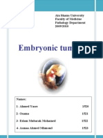 Embryonal Tumours(3)
