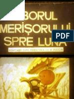 Zborul Merisorului Spre Luna Pptx