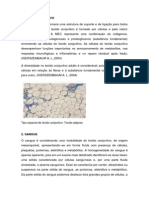 histo tecido conjutivo sanguineo.pdf