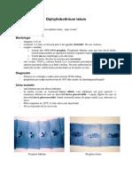Diphyllobothrium latum.pdf