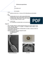 Echinococcus granulosus.pdf