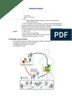 Giardia lamblia.pdf