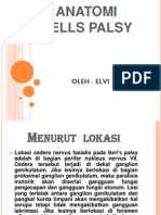 Anatomi Bells Palsy Elvi