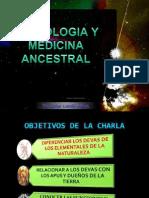 Ofrendas Con Minerales y Plantas - Astrologia