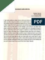 Religiosidades Na America Portuguesa