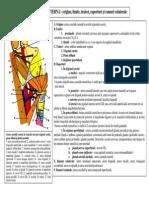 LP14 SEM2 BURCIN.pdf