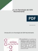 andreapresentacin-100114025936-phpapp01