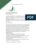 Rede Brasileira de Produção Mais Limpa