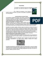 Clasificación de Los Insecticidass