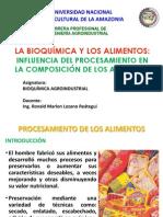 7-Influencia Del Procesamiento en Los Alimentos (2)