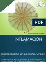 ACTIVIDAD ANTIINFLATORIA.pptx