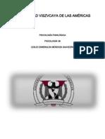 Universidad Viszvcaya de Las Américas (trabajo de psicología)
