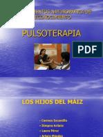 57549184 Pulsologia Ayurveda