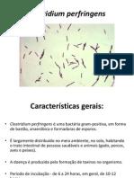 Aula 2 Micro - Clostridium e Micobactéria