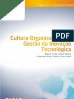 Cultura Organizacional e Gestão da Inovação Tecnológica - Renata Horta e Paulo Renato