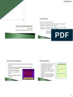 Electroforesis Tema 6