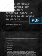 seminario tesis
