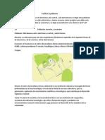 Proyecto de Metodologia II 2 Parcial