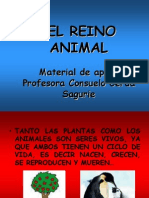 El reino animal material de apoyo. Organizacióon celular