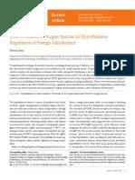 Role of Reactive Oxygen Species in Hypothalamic Regulation of Energy Metabolism