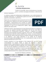 Certificación de Capacidad Tecnica
