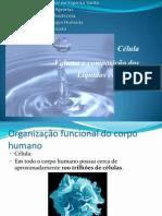 Volume e Composição Dos Liquidos Corporais