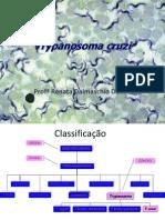 AULA 2 - Trypanosoma Cruzi