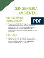REINGENIERIA  AMBIENTAL