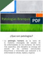 60127398-Anomalias-Branquiales