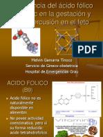 10. La Importancia Del Acido Folico y Zinc en La Gestacion y Su Repercusion en El Feto