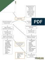 Heart Failure Schematic Diagram