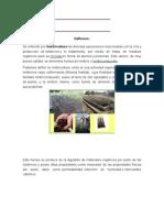 Lombricomposta y Lombricultura