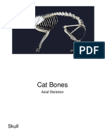 Cat Bones
