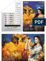 Cybershot Brochure 2012