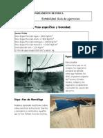 Estabilidad Guía 08