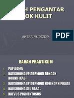Patologi Anatomi - Prof. Dr. Ambar Mudigdo, Dr., SpPA