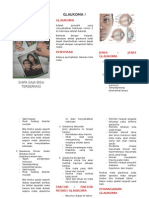 Leaflet Glaukoma