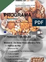 apresentação PP9