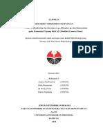 Laporan Pengaruh Pemberian Saccharomyces Sp., Rhizopus Sp. Dan Konsorsium Pada Fermentasi Tepung MOCAF (Modified Cassava Flour)